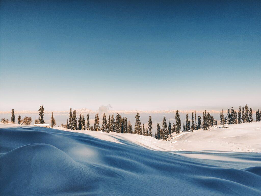 Kuvituskuva. Talvinen metsämaisema, jossa lumisena kumpuileva maa ja horisontissa havupuita.