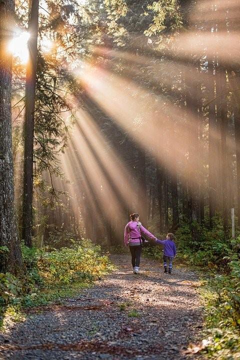 Kuvituskuva. Äiti ja lapsi seisovat metsätiellä ja pitävät toisiaan kädestä katsoen samalla toisiaan. Metsän latvuksista lankeaa kaunis valo heidän ylleen.