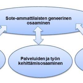 Sote-ammattilaisten arvioita työntekijyyden ja yhteistoiminnan muutososaamisen geneerisistä osaamiskuvauksista